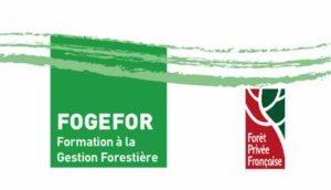 logo_fogefor